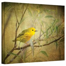 """""""Bird on Branch"""" by David Liam Kyle Graphic Art on Canvas"""