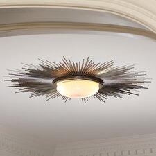 2 Light Sunburst Light Fixture