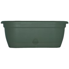 Lucca Oval Window Box (Set of 6)