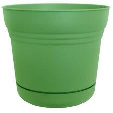 Saturn Round Pot Planter (Set of 12)
