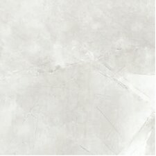 "Classic High Definition 18"" x 18"" Porcelain Matte Tile in Ivory"