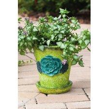Succulent Garden Round Pot Planter