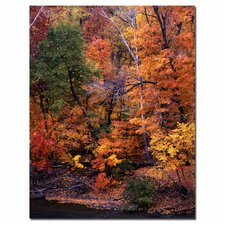 'I Love Autumn' by Kurt Shaffer Photographic Print on Canvas
