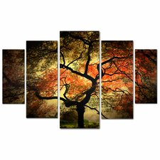 """Japanese"" by Philippe Sainte-Laudy 5 Piece Photographic Print on Wrapped Canvas Set"