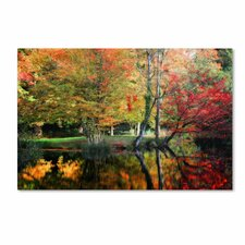 """I'll Be There"" by Philippe Sainte-Laudy Photographic Print on Wrapped Canvas"