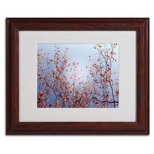 'Reprieve' by Philippe Sainte-Laudy Framed Photographic Print