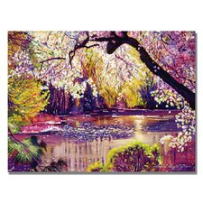 'Central Park Spring Pond' by David Lloyd Glover Painting Print on Wrapped Canvas