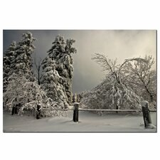'Winter Scene II' by Lois Bryan Photographic Print on Canvas