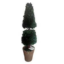 "30"" Preserved Natural Boxwood Cone Topiary in Planter"