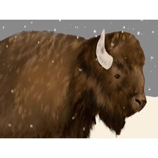 Bridget Bison by Maghann O'Hara Canvas Art