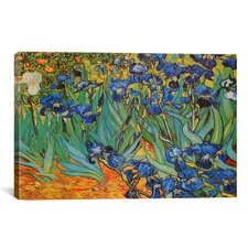 'Irises' by Vincent Van Gogh Painting Print on Canvas