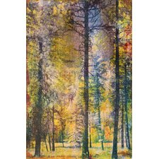 Walk in the Woods Canvas Art