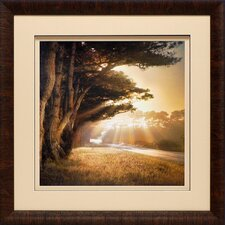 'No Place to Fall' by William Vanscoy Framed Photographic Print