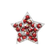 Hand Painted Star Ornament (Set of 20)