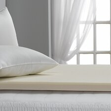 "Bed Bug Resistant 2"" Memory Foam Topper"