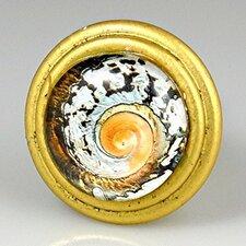 Signature Vintage Nautilus Swirl Knob (Set of 4)