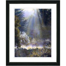 """""""Morning Light"""" by Mia Singer Framed Fine Art Giclee Photographic Painting Print"""