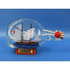 Bluenose Sail Model Ship in a Bottle