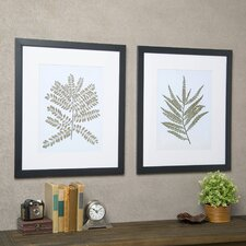 Fern Framed Print Collection