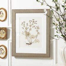 Pressed Botanical Framed Print Collection