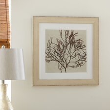 Coastal Coral Framed Print Collection