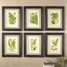 Frond Framed Prints (Set of 6)