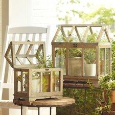 Greenhouse Terrariums (Set of 2)