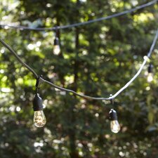 Medium Bulb String Lights