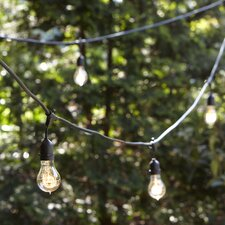 Vintage Edison String Lights