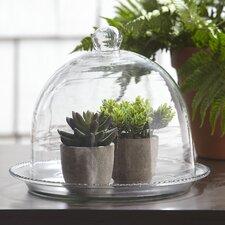 Beaded Glass Terrarium