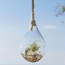 Hanging Terrarium, Faux Aloe & Sedim
