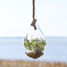 Hanging Terrarium, Faux Fern
