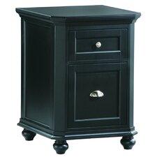 8891 Series 2 Drawer Cabinet