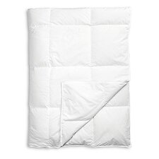 Down Comforter and Pillow Set