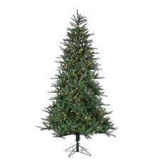 7.5' Natural Cut Franklin Spruce Christmas Tree with 500 Clear Lights with Stand