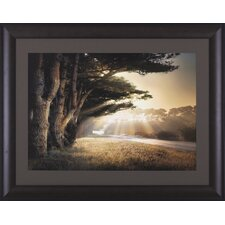 No Place To Fall by William Vanscoy Framed Photographic Print