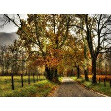 Rainy Morning on Sparks Lane by Danny Head Wrapped Photographic Print on Canvas