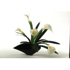 Calla Lilies in Contemporary Resin Planter