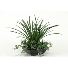 Areca Grass with Ivy in Square Metal Planter
