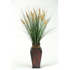Tall Onion Dogstail Grass in Wooden Decorative Vase