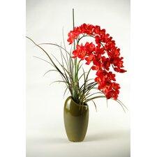 Cymbidium Orchids in Ceramic Vase