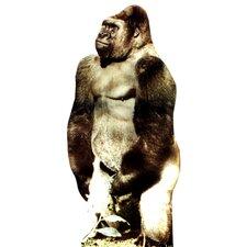 Animals Gorilla Wall Mural