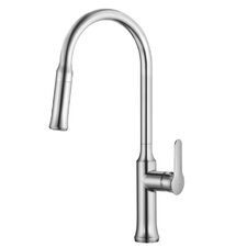 Nola™ Single Lever Pull Down Kitchen Faucet