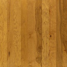 "Brushed Suede 5"" Engineered Hickory Hardwood Flooring in Buckskin"
