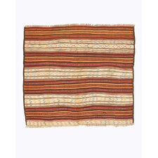 Hand-Knotted Multi-Colored Area Rug