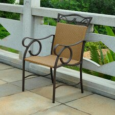Valencia Wicker Resin Patio Chair (Set of 2)