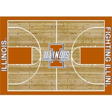 NCAA Court Illinois Novelty Rug