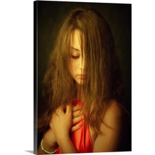 Red Cloth by Zachar Rise Photographic Print on Canvas