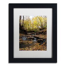 Lakeview Autumn Falls #3 Kurt Shaffer Matted Framed Wall Art