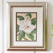 """""""Afternoon Magnolia"""" Framed Print"""